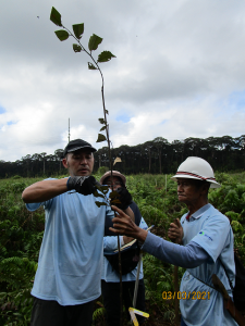 Wetlands International (Brunei) volunteers measuring sapling's diameter using vernier calliper. (Photo by: Wardah Tuah)